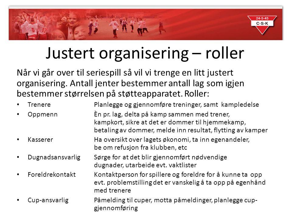 Justert organisering – roller