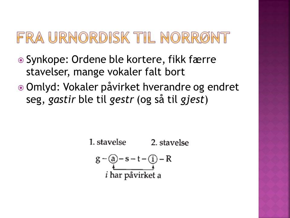 Fra urnordisk til norrønt