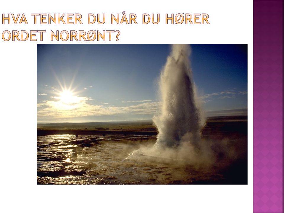 Hva tenker du når du hører ordet norrønt