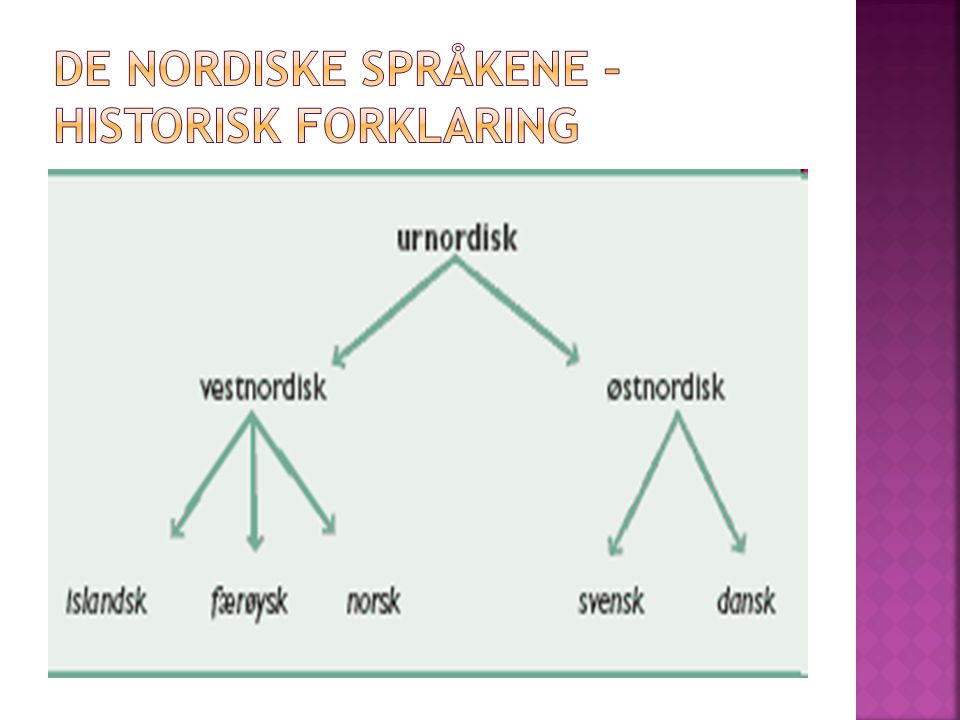 De nordiske språkene – historisk forklaring