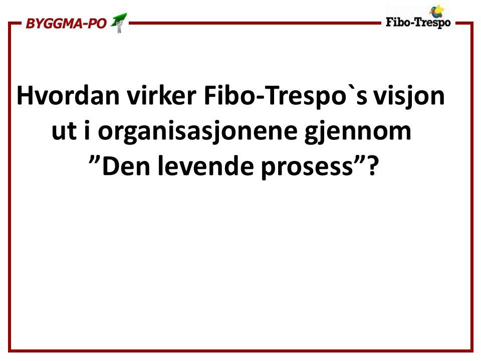 Hvordan virker Fibo-Trespo`s visjon ut i organisasjonene gjennom