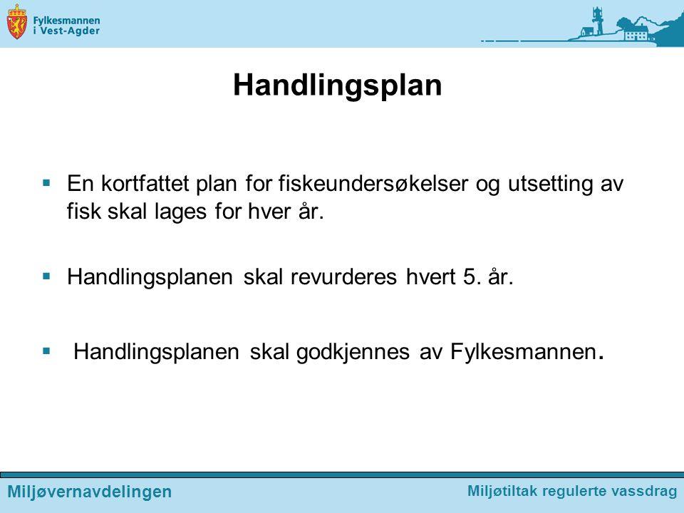 Handlingsplan En kortfattet plan for fiskeundersøkelser og utsetting av fisk skal lages for hver år.