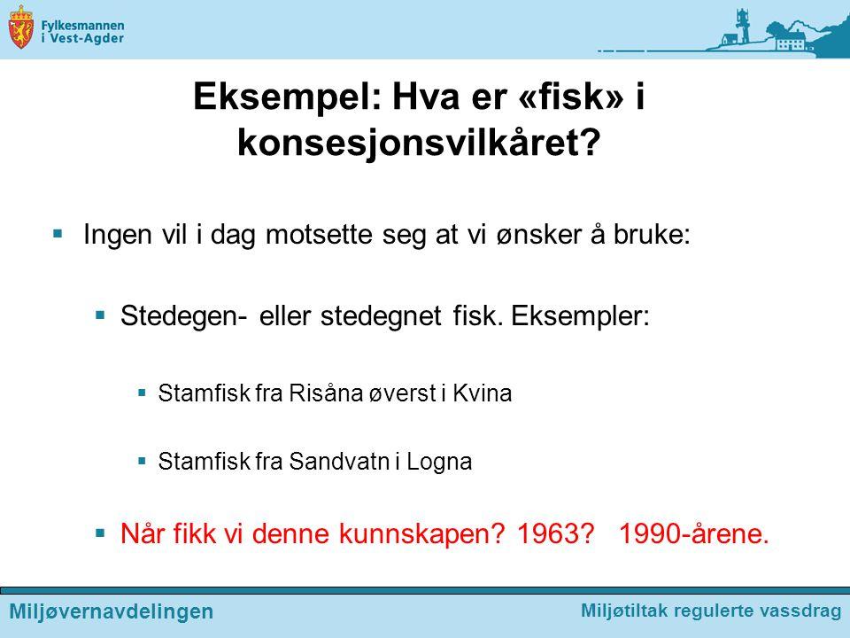 Eksempel: Hva er «fisk» i konsesjonsvilkåret