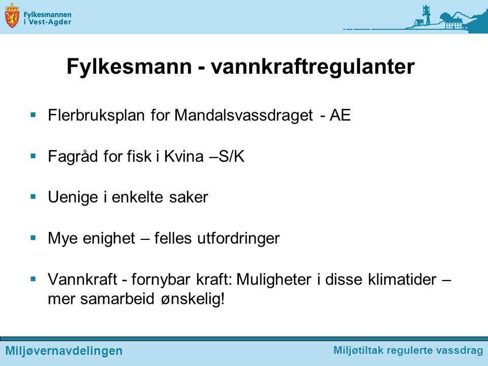 Fylkesmann - vannkraftregulanter