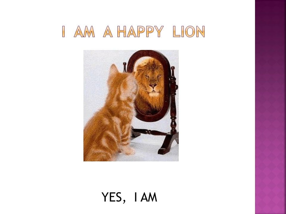 I Am a happy lion YES, I AM