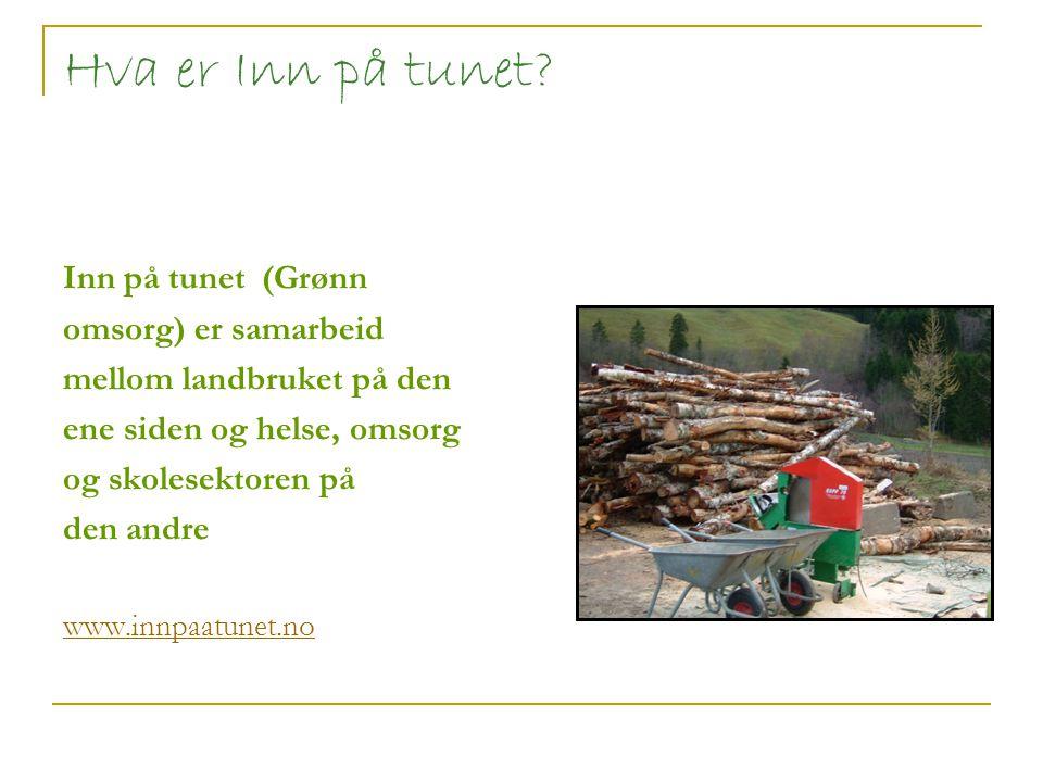 Hva er Inn på tunet Inn på tunet (Grønn omsorg) er samarbeid