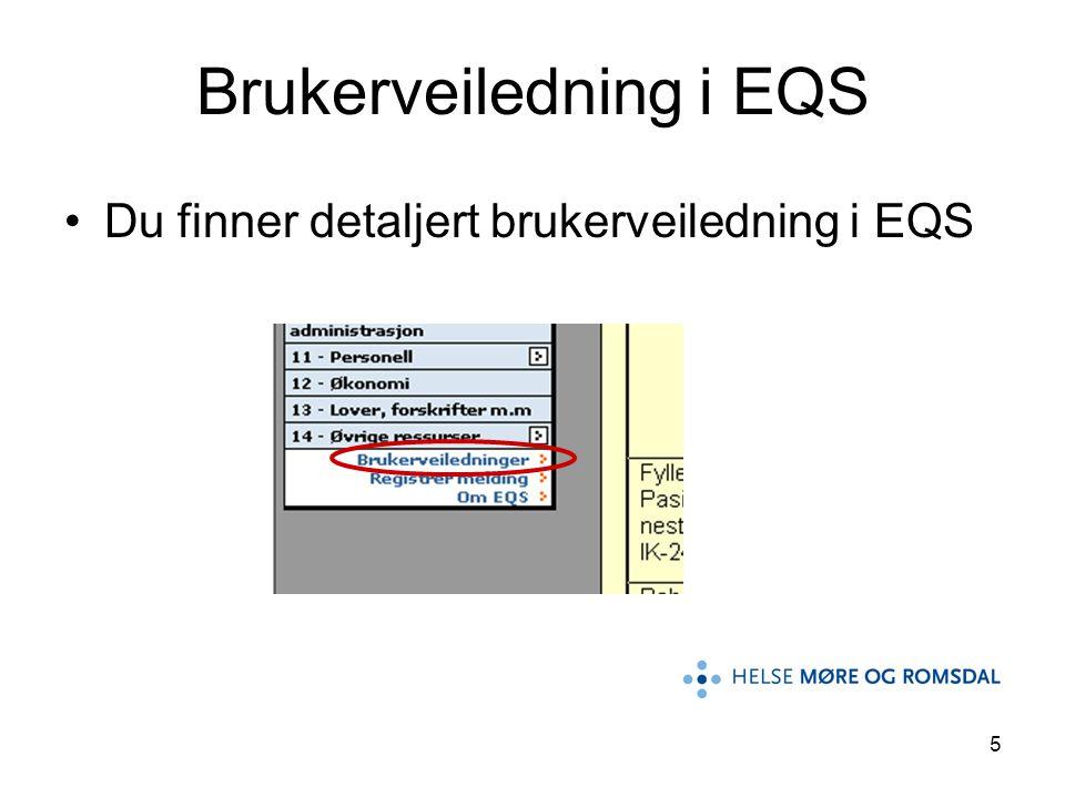 Brukerveiledning i EQS