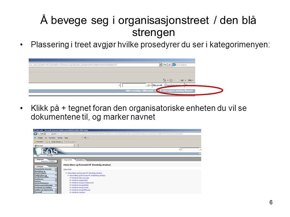 Å bevege seg i organisasjonstreet / den blå strengen