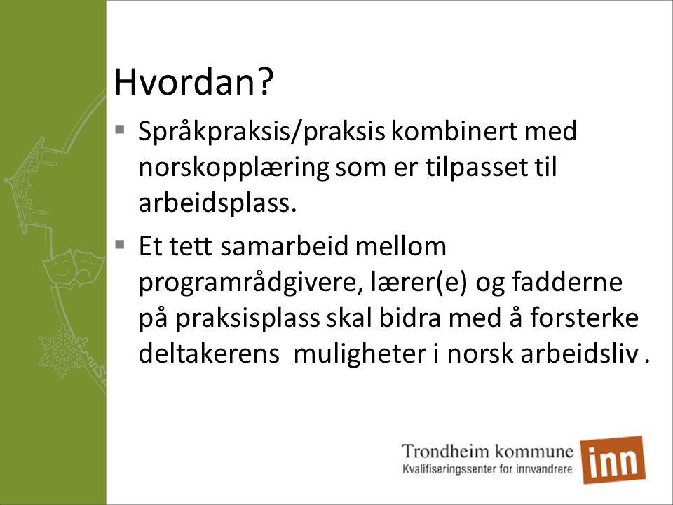 Hvordan Språkpraksis/praksis kombinert med norskopplæring som er tilpasset til arbeidsplass.
