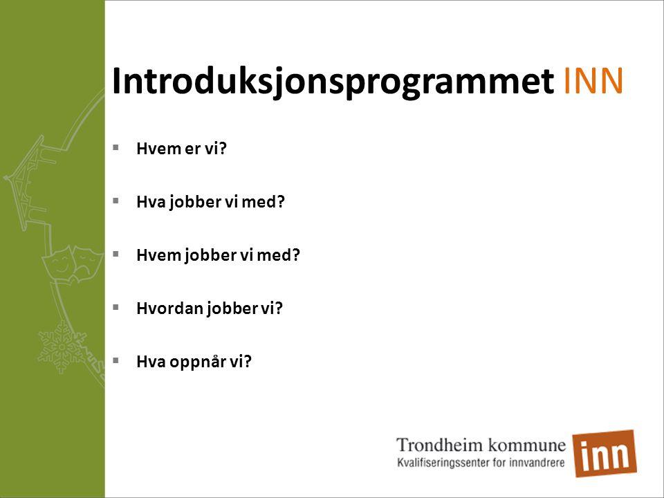 Introduksjonsprogrammet INN