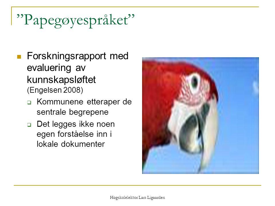Høgskolelektor Lars Ligaarden