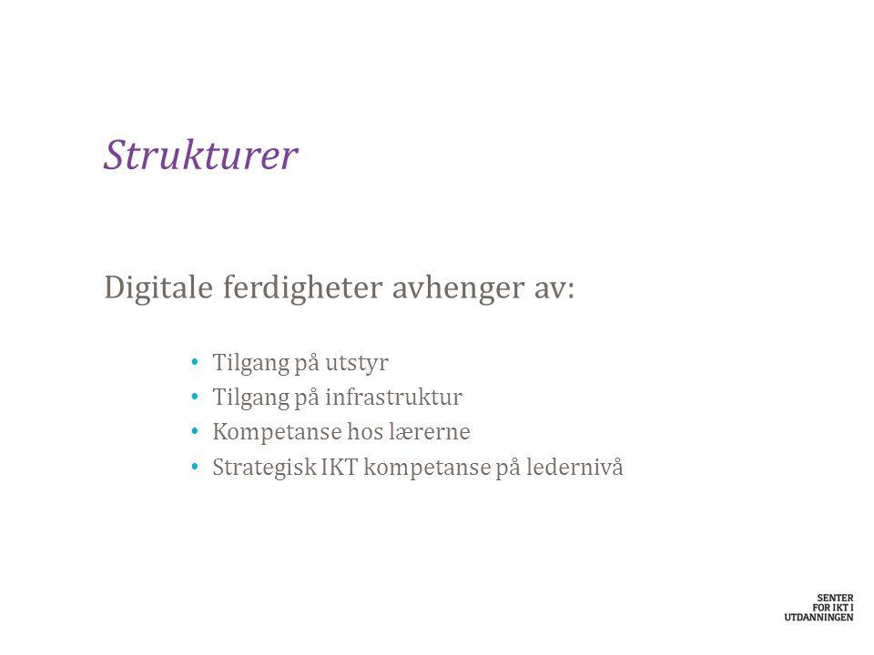 Strukturer Digitale ferdigheter avhenger av: Tilgang på utstyr