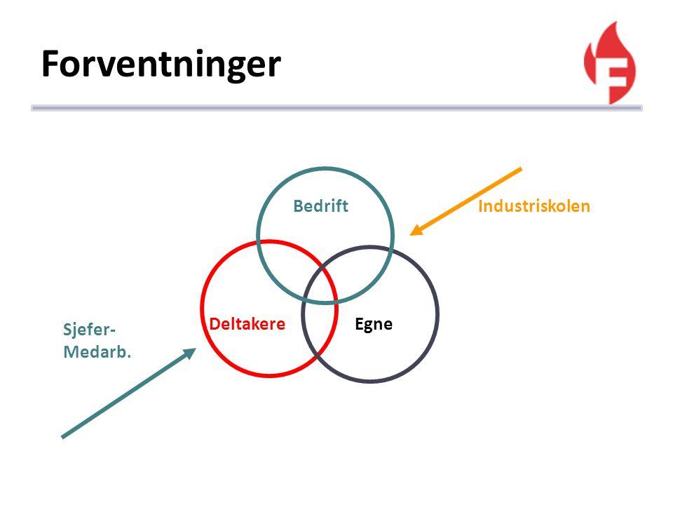 Forventninger Bedrift Industriskolen Deltakere Egne Sjefer-Medarb.