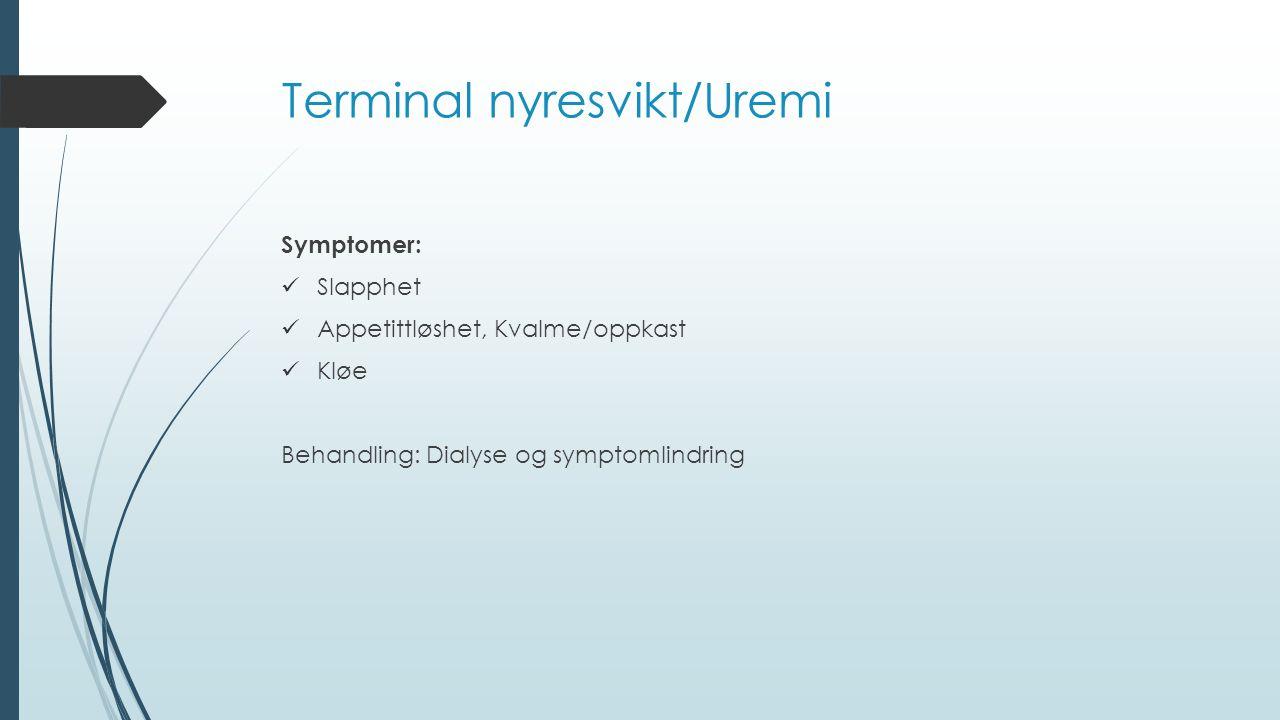 Terminal nyresvikt/Uremi