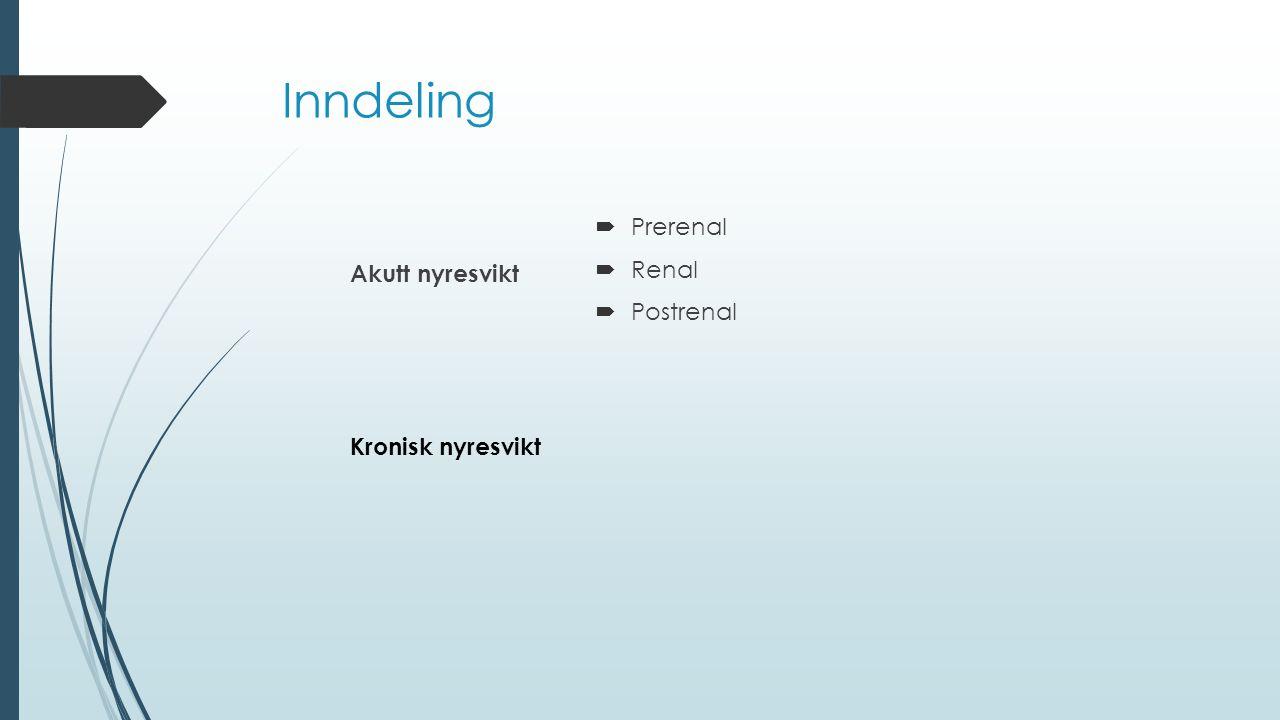 Inndeling Prerenal Renal Postrenal Akutt nyresvikt Kronisk nyresvikt