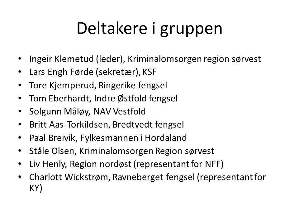 Deltakere i gruppen Ingeir Klemetud (leder), Kriminalomsorgen region sørvest. Lars Engh Førde (sekretær), KSF.