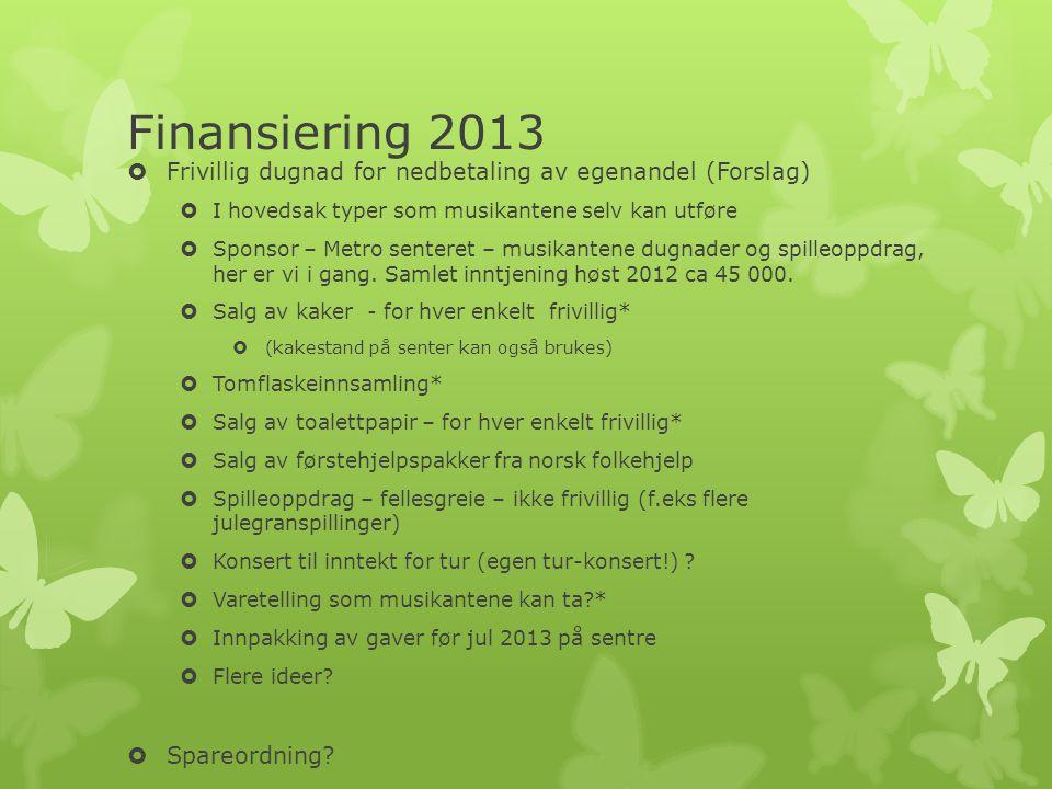 Finansiering 2013 Frivillig dugnad for nedbetaling av egenandel (Forslag) I hovedsak typer som musikantene selv kan utføre.