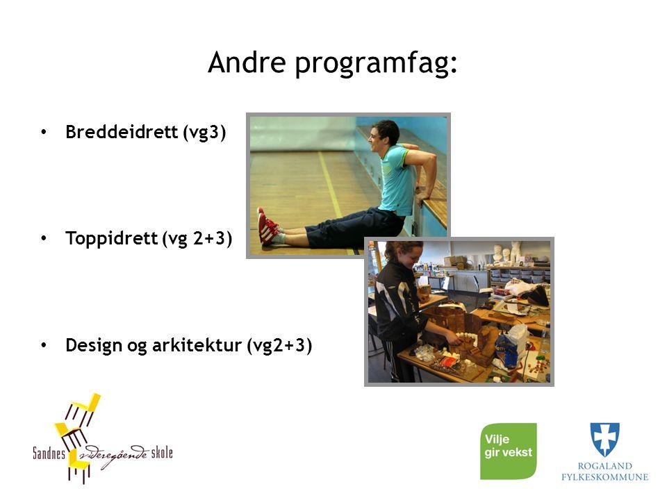 Andre programfag: Breddeidrett (vg3) Toppidrett (vg 2+3)