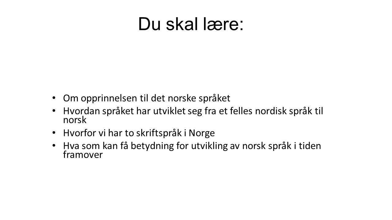 Du skal lære: Om opprinnelsen til det norske språket