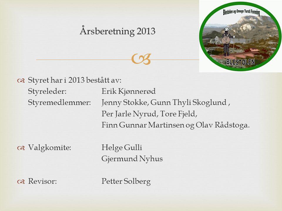 Årsberetning 2013 Styret har i 2013 bestått av: