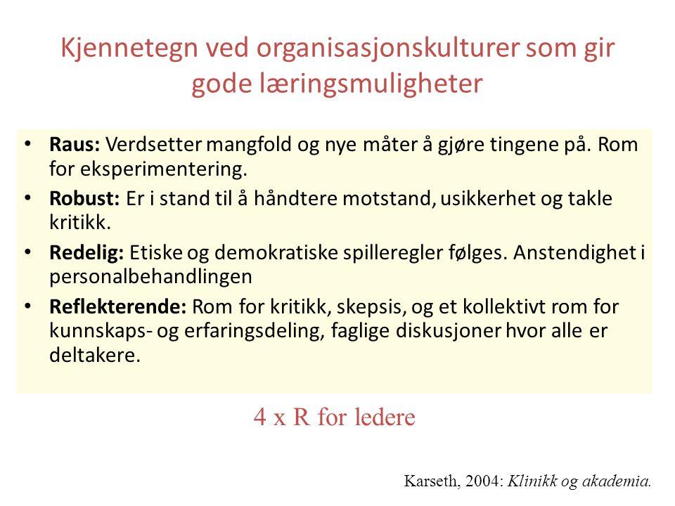 Kjennetegn ved organisasjonskulturer som gir gode læringsmuligheter