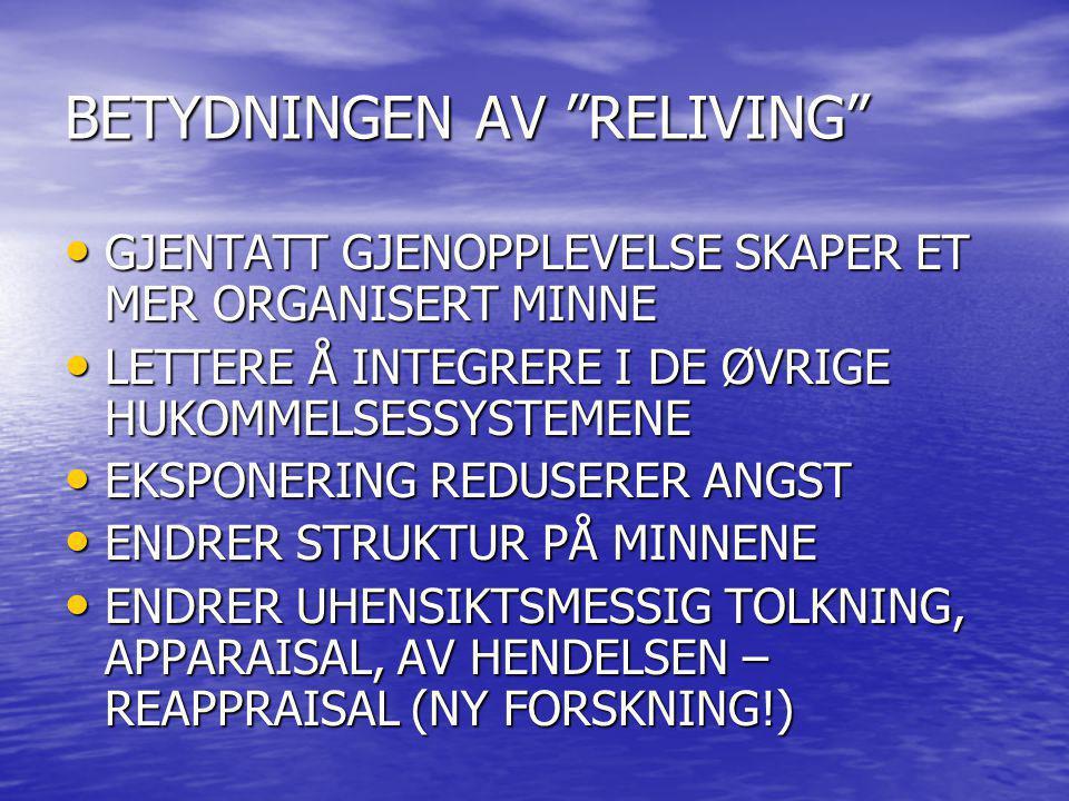 BETYDNINGEN AV RELIVING