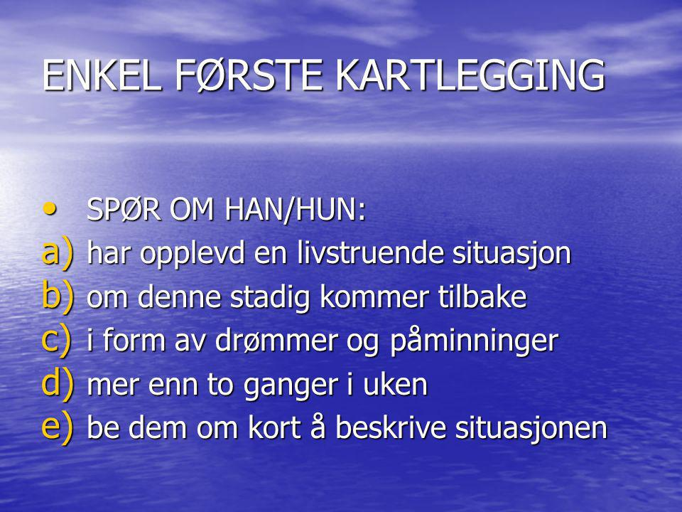 ENKEL FØRSTE KARTLEGGING