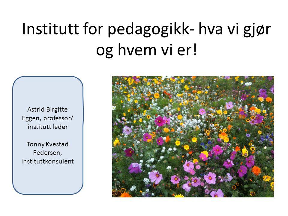 Institutt for pedagogikk- hva vi gjør og hvem vi er!