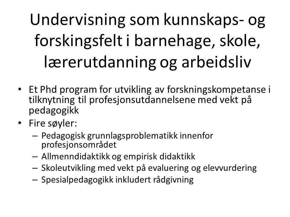 Undervisning som kunnskaps- og forskingsfelt i barnehage, skole, lærerutdanning og arbeidsliv