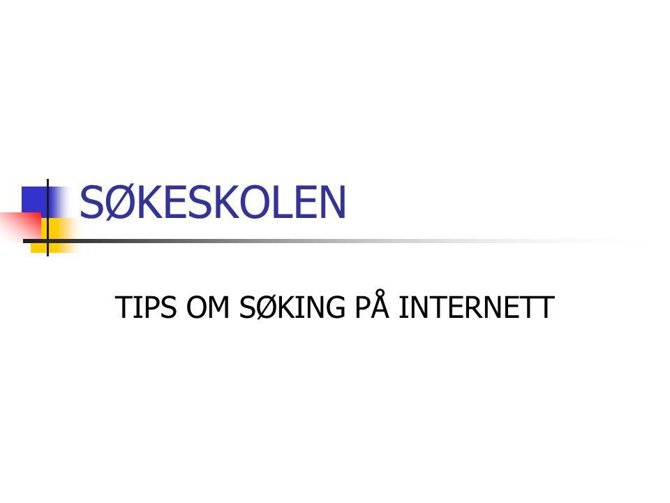 TIPS OM SØKING PÅ INTERNETT