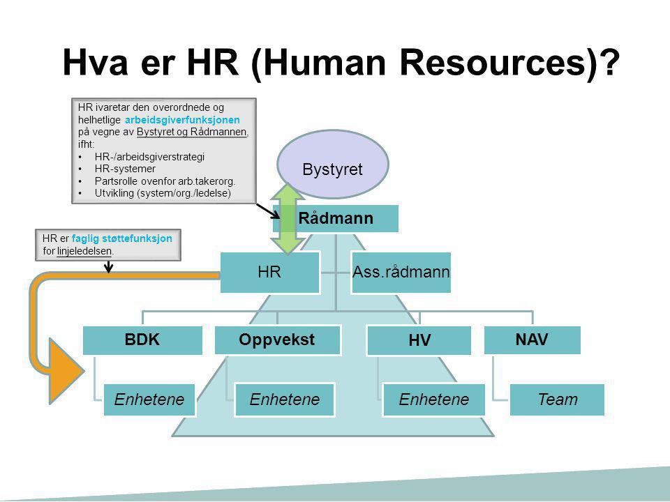 Hva er HR (Human Resources)