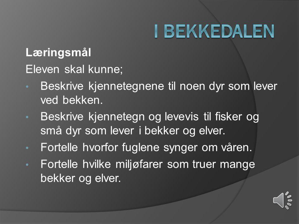 I Bekkedalen Læringsmål Eleven skal kunne;