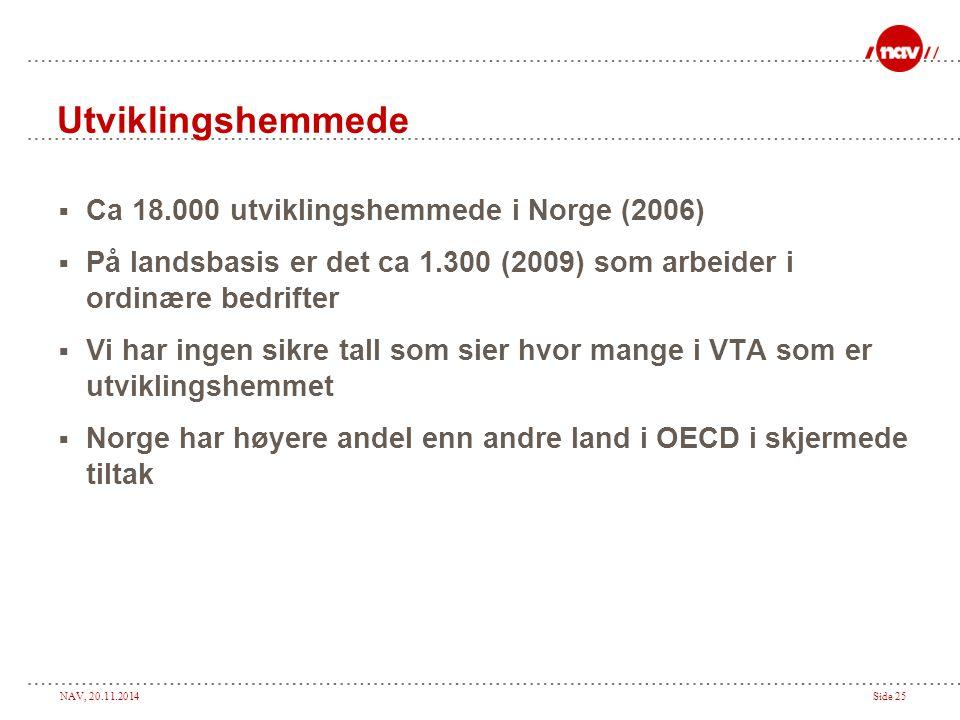 Utviklingshemmede Ca 18.000 utviklingshemmede i Norge (2006)