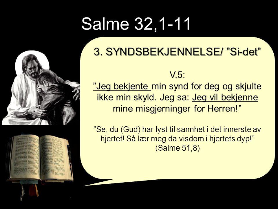 3. SYNDSBEKJENNELSE/ Si-det