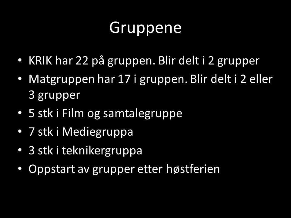 Gruppene KRIK har 22 på gruppen. Blir delt i 2 grupper