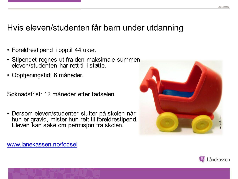 Hvis eleven/studenten får barn under utdanning