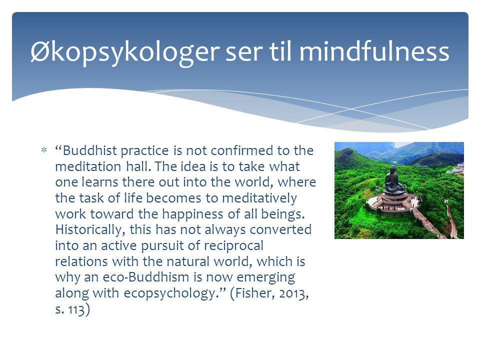 Økopsykologer ser til mindfulness