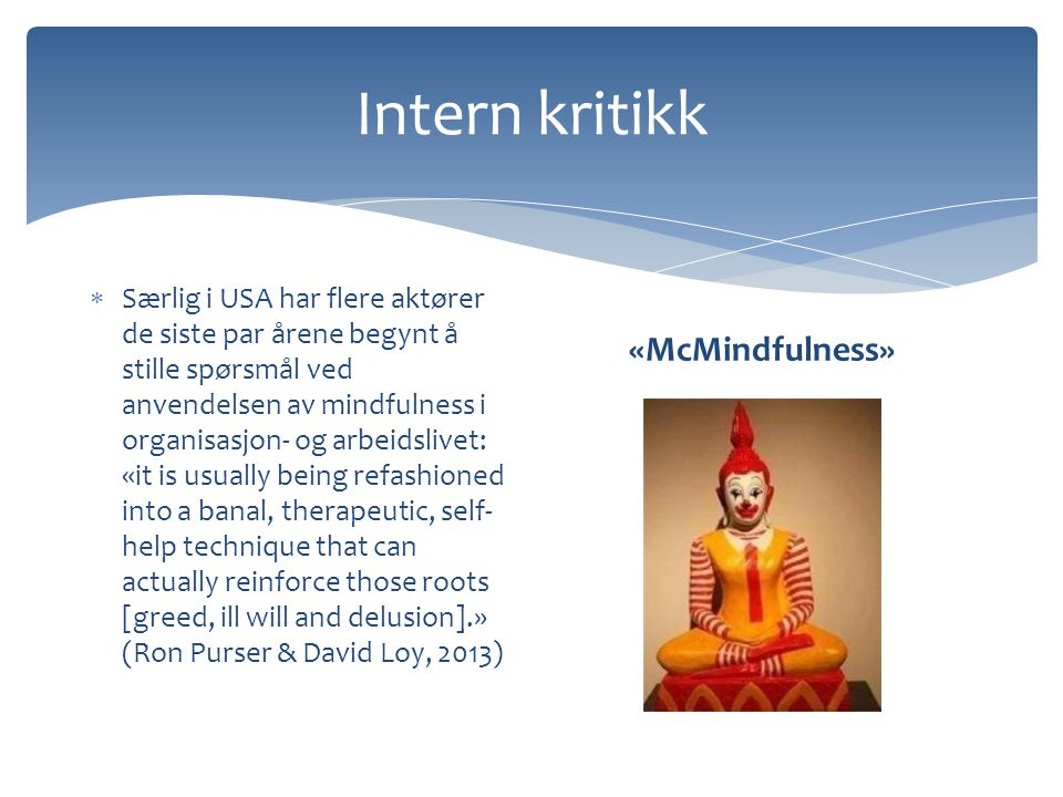 Intern kritikk «McMindfulness»