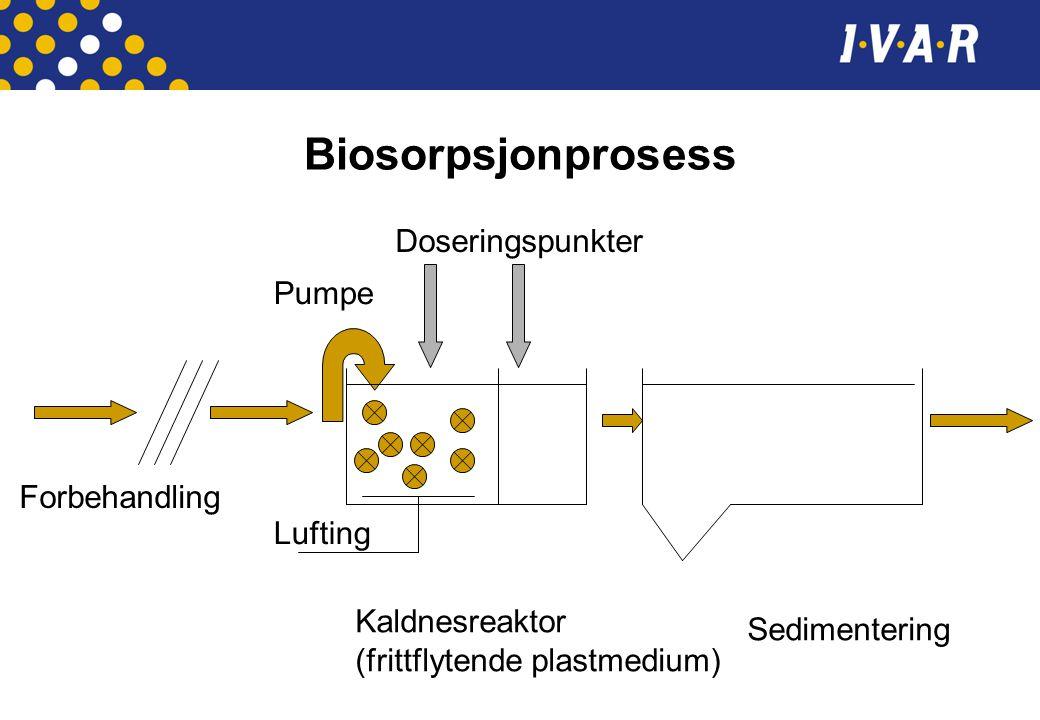 Biosorpsjonprosess Doseringspunkter Pumpe Forbehandling Lufting