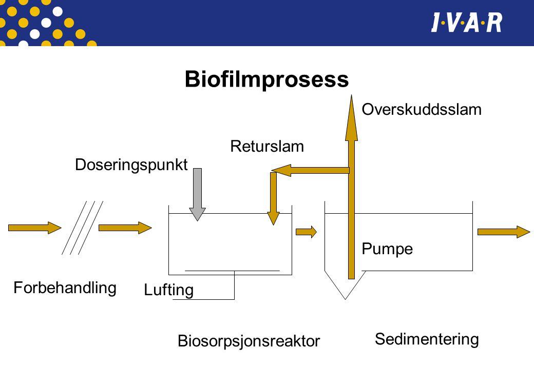 Biofilmprosess Overskuddsslam Returslam Doseringspunkt Pumpe