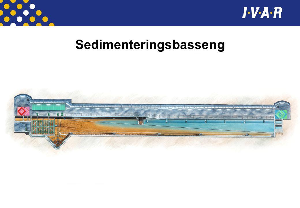Sedimenteringsbasseng