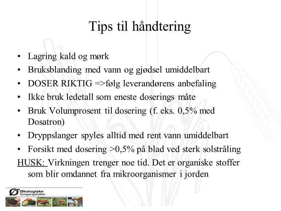 Tips til håndtering Lagring kald og mørk