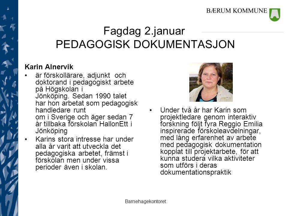 Fagdag 2.januar PEDAGOGISK DOKUMENTASJON