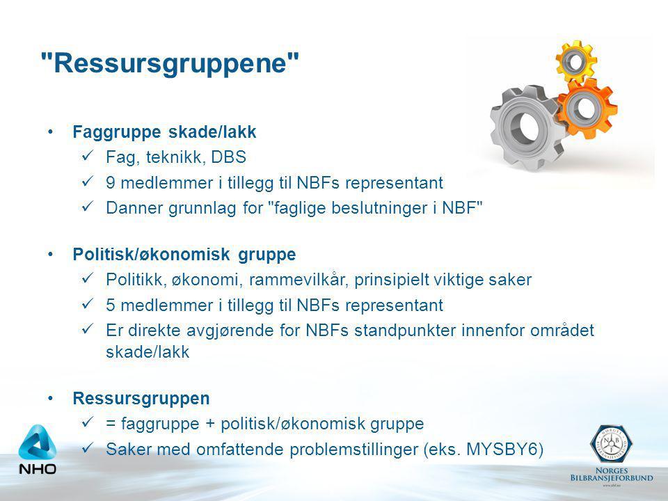 Ressursgruppene Faggruppe skade/lakk Fag, teknikk, DBS