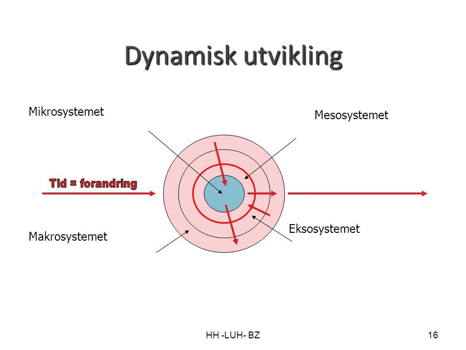 Dynamisk utvikling Mikrosystemet Mesosystemet Eksosystemet
