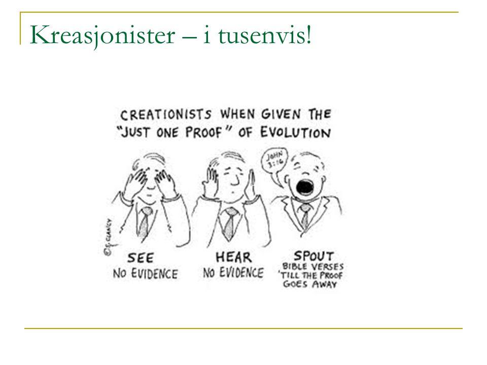 Kreasjonister – i tusenvis!