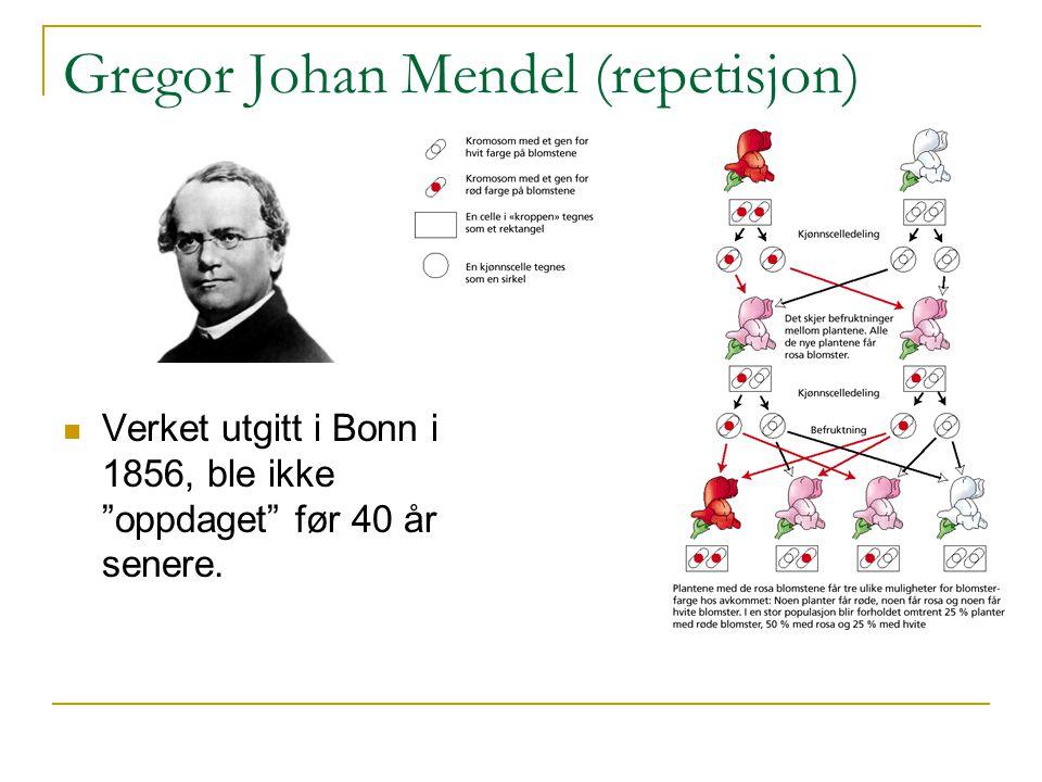 Gregor Johan Mendel (repetisjon)