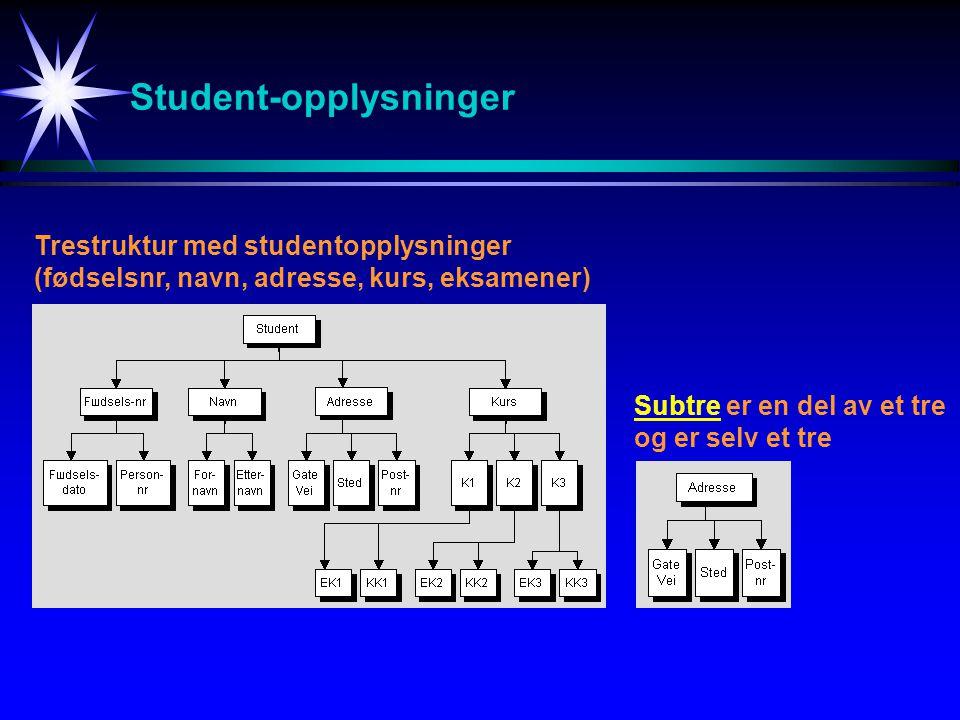 Student-opplysninger