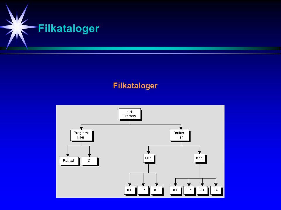 Filkataloger Filkataloger