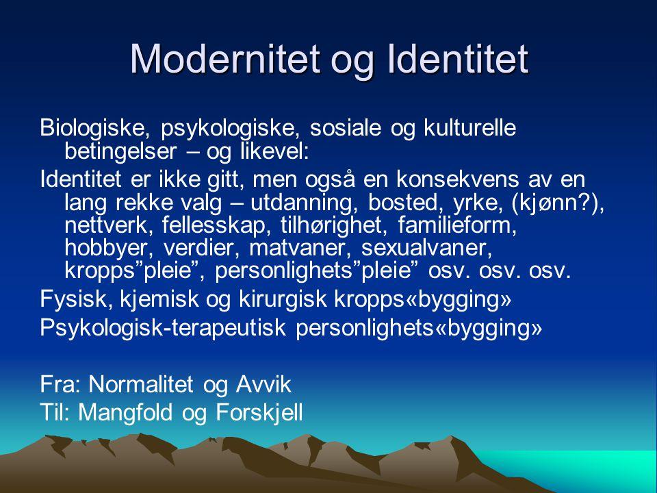 Modernitet og Identitet